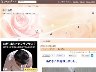 ペーパーフラワー あじさい - オカンの夢 - Yahoo!ブログ