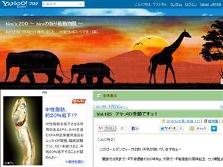 Vol.165 アヤメの季節ですョ! - hiro's ZOO 〜 hiroの折り紙動物園 〜 - Yahoo!ブログ